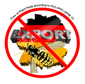Non-wood-export-erklaerung-